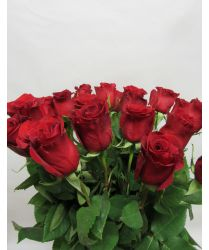 Bouquet de 19 roses rouges