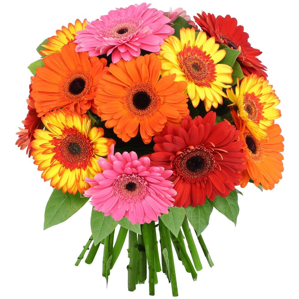 Bouquet florajet for Bouquet de fleurs gerbera